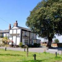Norley dog-friendly pub, Cheshire - Cheshire dog-friendly pubs.jpg