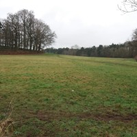 Just off the A50, beautiful pool, meadow, and option for long dog walks, Leicestershire - 4A248B96-B2FC-4D77-A0D8-485C8DA5EF42.jpeg