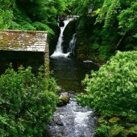 A591 Lakeside dog-friendly hotel, bar and lovely walks, Cumbria - Cumbria dog-friendly pub and dog walk