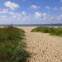 Par Sands dog-friendly beach, Cornwall - par1.jpg