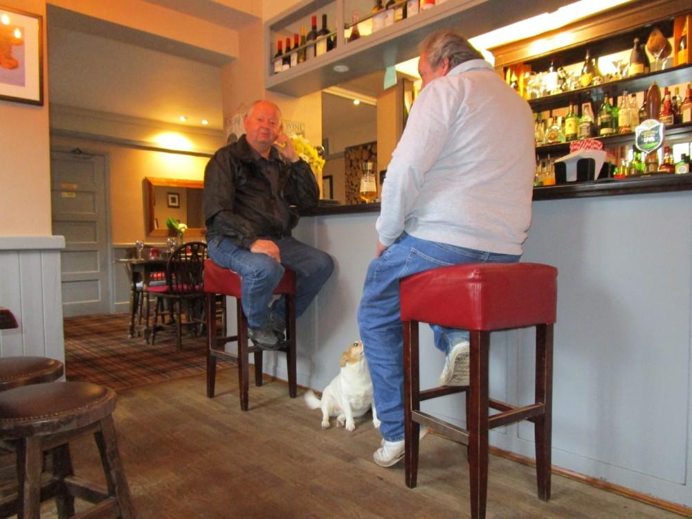A287 Lower Bourne dog-friendly pub, Surrey - Surrey dog-friendly pubs and dog walks.JPG