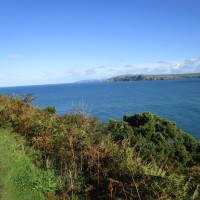 Stunning dog walk and dog-friendly beach, Pembrokeshire, Wales - IMG_5900.JPG