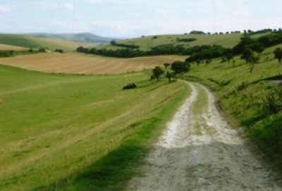 A26 River walk with dog-friendly pub, East Sussex - Driving with Dogs