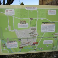 A37 Dog walk and refreshments near Yeovil, Dorset - IMG_6140.JPG