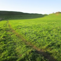 Historic dog walk near Dorchester, Dorset - Dorset dog walk.JPG