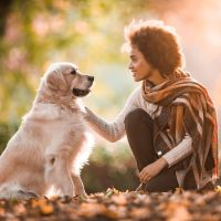 dog and woman talking.jpg