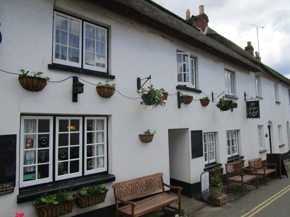 Village pub and dog walk near Exmouth, Devon - Devon dog walk and dog-friendly pub.JPG