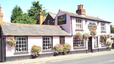 Dog-friendly pub near Chelmsford, Essex - Driving with Dogs