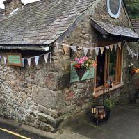 Dartmoor dog-friendly pub and cafes, Devon - Devon dog-friendly pubs and walks.jpg