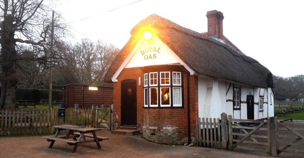 A31 woodland walkies and dog-friendly pub, Hampshire - Hampshire dog-friendly pub and dog walk