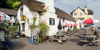 Comfy traditional pub with rooms and very dog friendly, Devon - Driving with Dogs