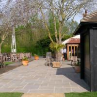 A4 Dog walk and dog-friendly inn, Berkshire - Berkshire dog walk and dog friendly pub