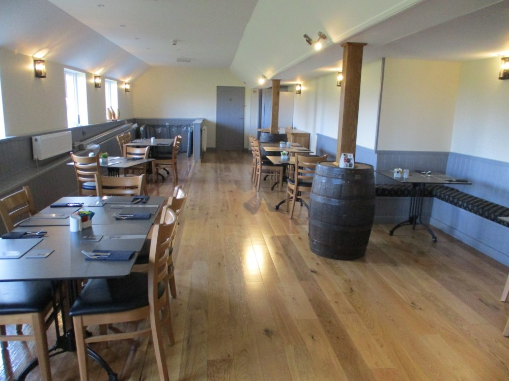 A37 dog-friendly dining and dog walk, Dorset - IMG_0194.JPG