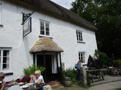 A382 Village pub and dog walk, Devon - Driving with Dogs