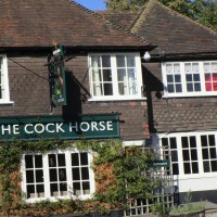 Detling dog-friendly pub, Kent - Kent dog-friendly pubs with dog walks