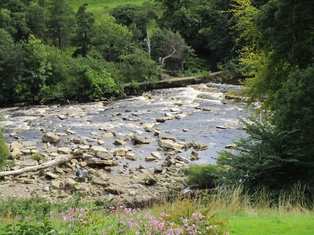 A1M Junction 52 Swaledale dog walks, Yorkshire - Yorkshire dog-friendly pub and dog walk