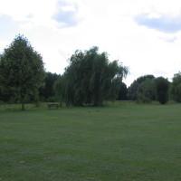 Calcot Linear Park, Berkshire - Berkshire dog walk