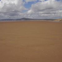 M4 junction 41 dog friendly beach, Glamorgan, Wales - Dog walks in Wales