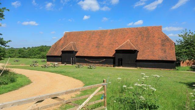 Medieval village with dog walks and dog-friendly pub, Essex - Essex dog walks.jpg