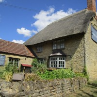 A428 dog walk and dog-friendly pub, Northamptonshire - Northamptonshire dog walk and dog-friendly pub