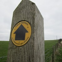 St Roche dog walk near Chichester, West Sussex - Sussex dog walks.JPG