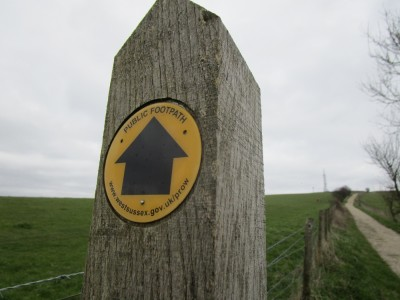 St Roche dog walk near Chichester, West Sussex - Driving with Dogs