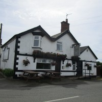 Newbold Verdon dog-friendly pub and dog walk, Leicestershire - Dog walks in Leicestershire
