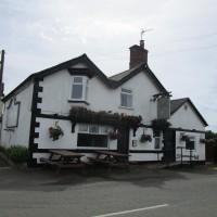 Newbold Verdon dog-friendly pub and dog walk, Leicestershire - Dog walks in Leicestershire