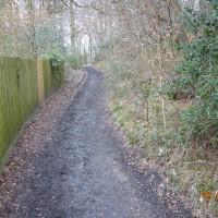 Dog-friendly pub and dog walk near Newbury, Berkshire - Berkshire dog friendly pub and dog walk3
