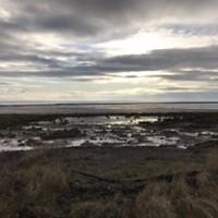 Powfoot Beach - dog-friendly, Scotland - 7A078C4D-2F9D-49C3-B441-AA6B7F77DB6A.jpeg