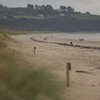 Harlech dog-friendly beach, Wales - A4A389A4-B0AD-469B-9FA4-C2DA735D3CA2.jpeg