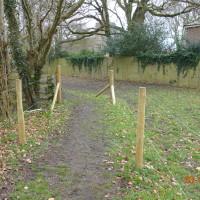 Downs dog-friendly pub and dog walk, Berkshire - Dog walks in Berkshire