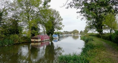 Dog walk and dog-friendly pub near the M1 Jct 24A and the A50, Derbyshire - Driving with Dogs