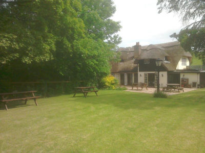 A30 dog-friendly pub and dog walk near Shaftesbury, Wiltshire - Driving with Dogs