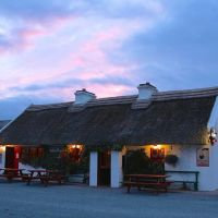 Beachside dog-friendly cafe, beach and camping, RoI - dog-friendly pub with camping and beach.jpg