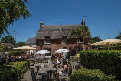 A348 dog walk and dog-friendly pub, Dorset - Driving with Dogs