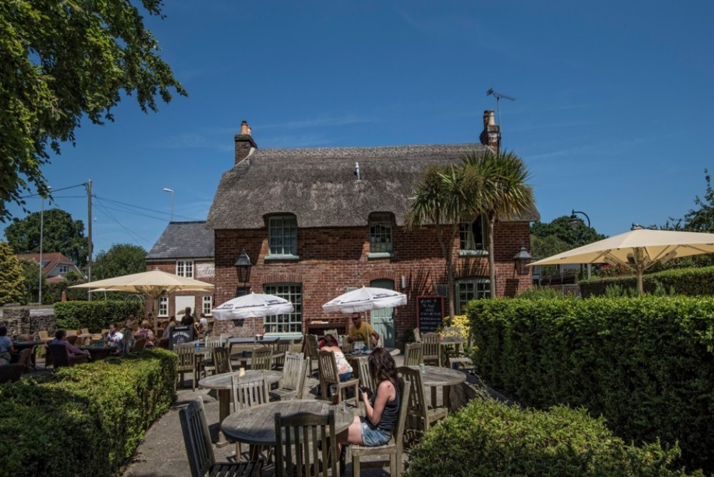A348 dog walk and dog-friendly pub, Dorset - Dorset dog-friendly pub and dog walk