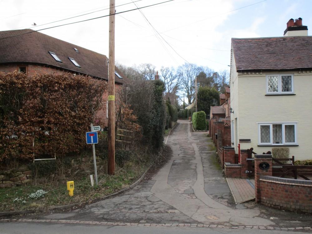 Woodland walk and dog-friendly pub near Shrawley, Worcestershire - Worcestershire dog walk and dog-friendly pub