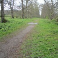 Norwich Country Park dog walks and cafe, Norfolk - Norfolk nature ramble with the dog.JPG