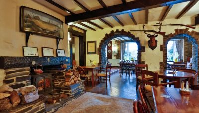 A384 dog-friendly pub and B&B near Totnes, Devon - Driving with Dogs