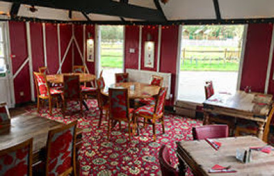 A24 dog-friendly country pub and dog walk, West Sussex - Driving with Dogs