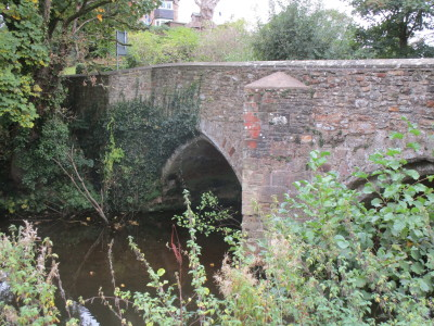 River Tone dog walk and dog-friendly pub, Somerset - Driving with Dogs