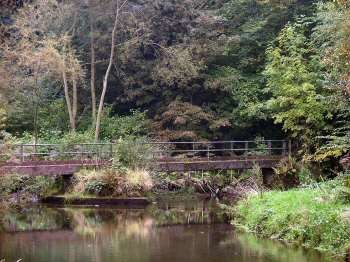 Millers Dale dog walk with dog-friendly pub, Derbyshire - millers-dale-bridge.jpg
