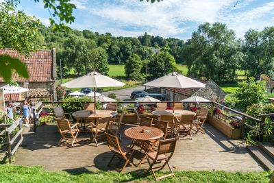 A36 dog-friendly pub and dog walk near Bath, Somerset - Driving with Dogs