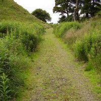 A89 dog walk near Bathgate West Lothian, Scotland - Dog walks in Scotland