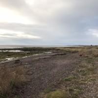 Powfoot Beach - dog-friendly, Scotland - 0ACC337B-D050-42F6-A8F6-A76D49614CA3.jpeg
