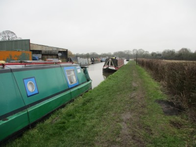 Dog walk and dog-friendly pub near the Ashby canal, Leicestershire - Driving with Dogs