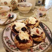 Dog-friendly Vintage Tea Room in Minehead, Somerset - Dog-friendly cafe in Minehead.jpg