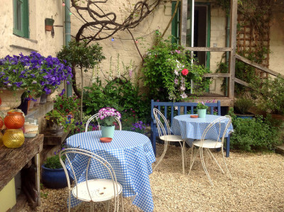 Bath dog walk and dog-friendly pub, Somerset - Driving with Dogs
