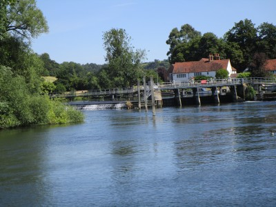 Henley area dog-friendly pub and dog walk, Oxfordshire - Driving with Dogs